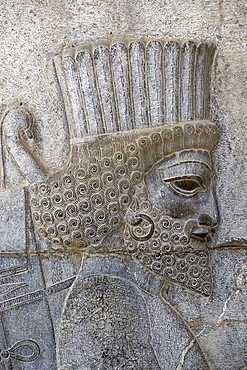 Bas relief of a Persian soldier, the monumental stairs of the Apadana, Persepolis, Iran, Middle East