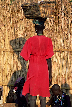 Back view of a Nuer woman carrying a wicker cradle or crib on her head, Itang region, Ilubador state, Ethiopia, Africa