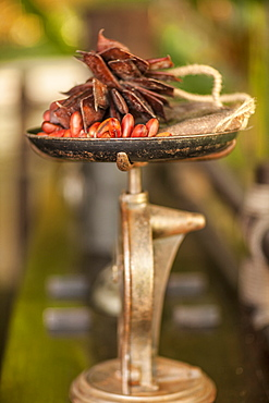 Weighing scales and chillies, Golden Triangle, Thailand, Southeast Asia, Asia