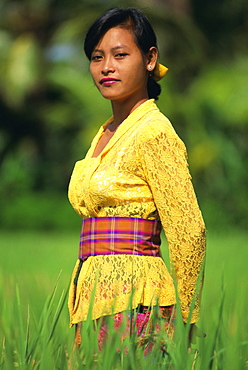 Portrait of a young woman in traditional dress standing in a paddy field, island of Bali, Indonesia, Southeast Asia, Asia