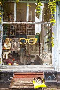 Spectacle shop, Amsterdam, The Netherlands, Europe