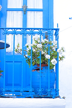 White geraniums on blue balcony, Mykonos Town, Mykonos, Cyclades, Greek Islands, Greece, Europe