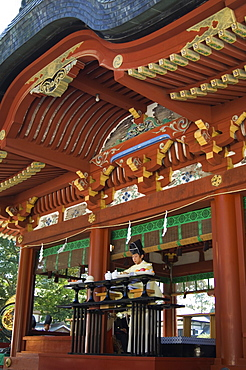 Wedding ceremony at Hachimangu Shrine, Kamakura city, Kanagawa prefecture, Japan, Asia