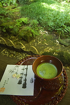 Tea ceremony in bamboo forest,  Kamakura city, Kanagawa prefecture, Japan, Asia