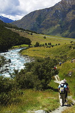 Hikers on Rob Roy Glacier Hiking Track, Mount Aspiring National Park, Otago, South Island, New Zealand, Pacific