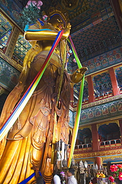 The 55 foot high sandalwood statue of Maitreya Buddha recorded in the Guiness Book of Records at Yonghe Gong Tibetan Buddhist Lama Temple, Beijing, China, Asia