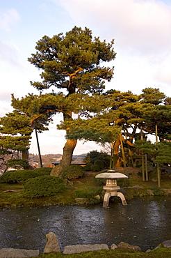 Stone lantern, cherry blossom, Kenrokuen Garden, Kanazawa city, Ishigawa prefecture, Honshu island, Japan, Asia