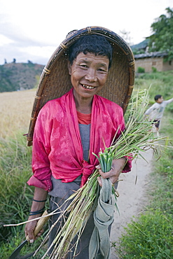 A local woman working in the fields, Punakha, Bhutan, Asia