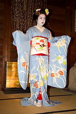 Geisha, maiko (trainee geisha) entertainment, Kyoto city, Honshu, Japan, Asia