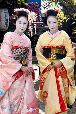 Geisha, maiko (trainee geisha) in Gion, Kyoto city, Honshu, Japan, Asia