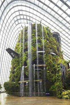 Gardens by the Bay, Cloud Forest, botanic garden, Singapore, Southeast Asia, Asia