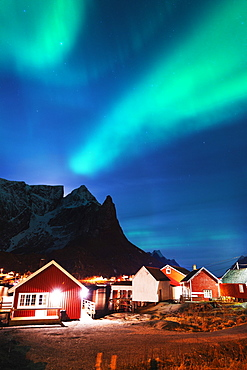 Aurora borealis (Northern lights), Reine, Moskenesoy, Lofoten Islands, Norway, Scandinavia, Europe