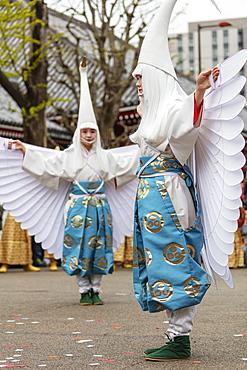 Hakucho White Swan (White Heron) festival, Sensoji Temple, Asakusa, Tokyo, Japan, Asia