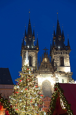 Christmas Tree and Tyn Gothic Church, Old Town Square, UNESCO World Heritage Site, Prague, Czech Republic, Europe