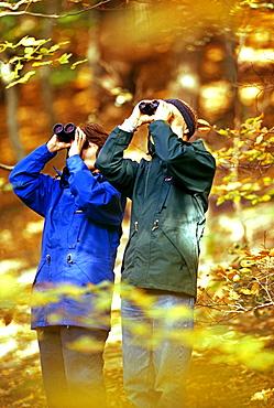 Birdwatching couple in woodland, autumn, United Kingdom, Europe