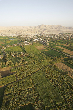 Fields along the Nile, near Luxor, Egypt, North Africa, Africa
