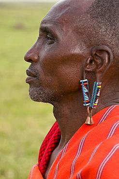 Masai man, Masai Mara, Kenya, East Africa, Africa - 741-3364