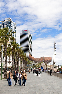 Golden fish by Frank Owen Gehry, Mapfre Tower and Hotel Arts, Olympic Harbour, La Barceloneta district, Barcelona, Catalonia, Spain, Europe