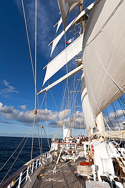 Star Clipper sailing cruise ship, Deshaies, Basse-Terre, Guadeloupe, West Indies, French Caribbean, France, Central America