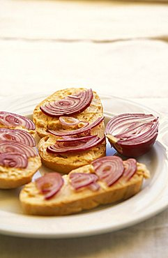 Bruss cheese, toasted bread seasoned with red onions, Racconigi, Piedmont, Italy