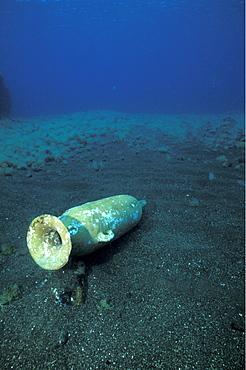 Punic Amphora, Pantelleria, Italy