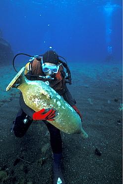 Amphora, Pantelleria, Italy