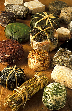 Caprini, Guffanti cheese, Arona, Piedmont, Italy.
