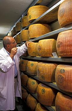 Parmigiano Reggiano, Guffanti cheese, Arona, Piedmont, Italy.
