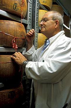 Carlo Fiori tasting cheese dealer, Guffanti cheese, Arona, Piedmont, Italy.