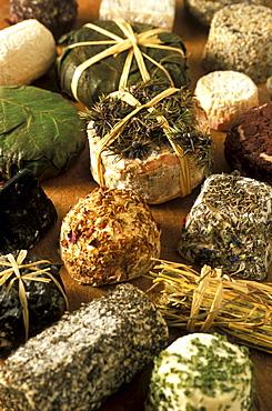 Caprini, Guffanti cheese dealer, Arona, Piedmont, Italy.
