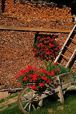 Woodshed, Maso typical house, Trentino Alto Adige, Italy