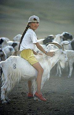 Girl riding a Cashmere goat, Mongolia, Asia