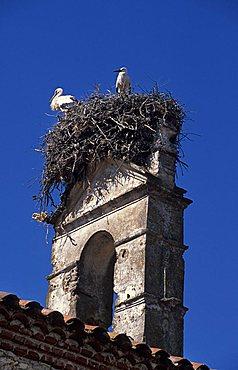 Monasterio Rocamador hotel (ex Franciscan monastery), Almendral, Extremadura region, Spain, Europe