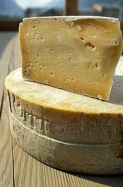 Bitto cheese, Rini farm holidays, Bormio, Lombardy, Italy