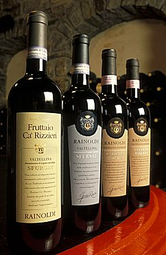 Vines, Aldo Rainoldi production, Sondrio, Lombardy, Italy