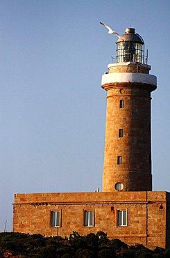 Lighthouse, Capo Sandalo, Carloforte, Sardinia, Italy, Europe
