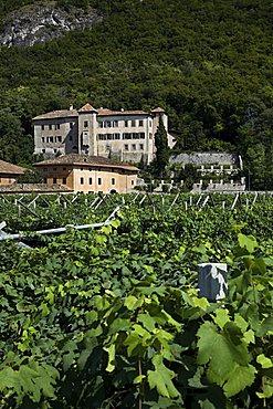 Firmian castle, Mezzocorona, Trentino-Alto Adige, Italy