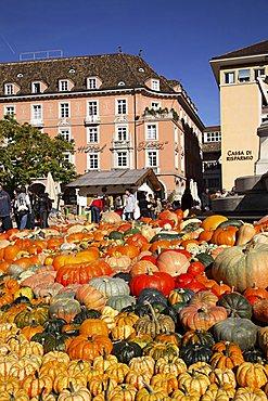 Pumpkin fair, Walther square, Bolzano, Trentino Alto Adige, Italy