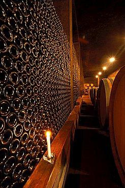 Winery la Stoppa, Piacenza, Emilia-Romagna, Italy