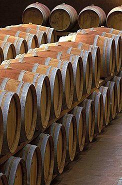 Winery of Brolio, Gaiole in Chianti, Tuscany, Italy