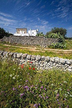 Masseria Ottava Grande, Fasano, Puglia, Italy