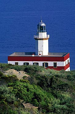 Lighthouse, Punta Capel Rosso, Giglio Island, Tuscany, Italy