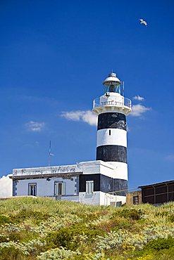 Capo Sant'Elia lighthouse, Calamosca, Cagliari, Sardinia, Italy, Europe