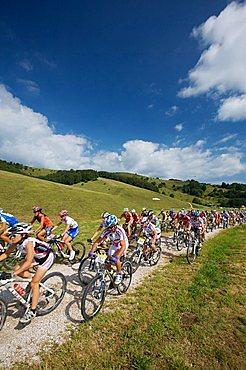 Lessiniabike race, Malga Fratte near Sega di Ala in Lessinia, Trentino Alto Adige, Italy, Europe