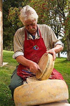 Typical cheese, Trentino Alto Adige, Italy, Europe