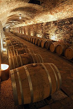 "Contratto underground wine cathedral in Canelli, the barrels made by oak wood and named ""barriques"" where the wine is maturing,  Asti, Piedmont, Italy"