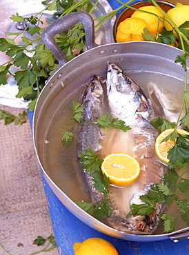 Boiled fish, Sicily, Italy