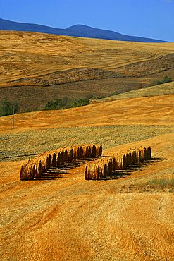 Val d'Orcia country, Siena, Tuscany, Europe