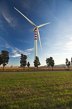 Wind Wheels, Capoterra, Cagliari Province, Sardinia, Italy