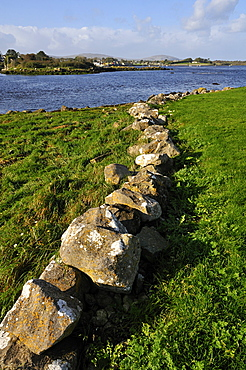 Dry wall, Dunguaire Castle near Kinvarra, Galway Bay, County Galway, Republic of Ireland, Europe